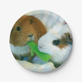guinea pig Christmas plate