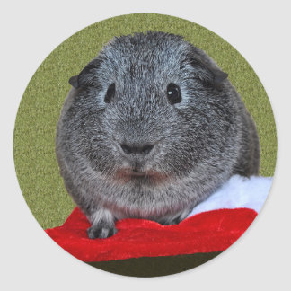 Guinea Pig Christmas Round Sticker