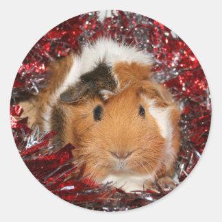 Guinea Pig Christmas sticker