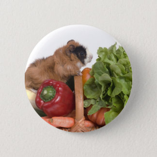 guinea pig in a basket of vegetables 2 inch round button
