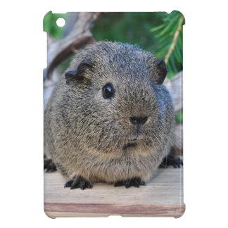 Guinea Pig iPad Mini Cases