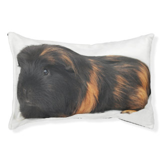 Guinea Pig Pet Bed