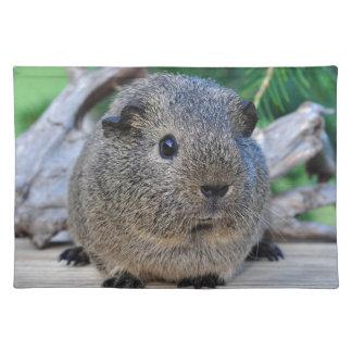 Guinea Pig Placemat