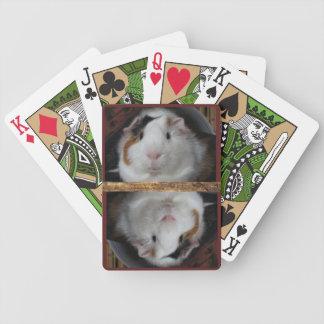 Guinea Pig Poker Deck