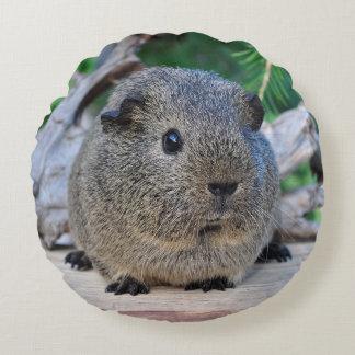 Guinea Pig Round Pillow