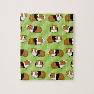 Guinea pig selection jigsaw puzzle