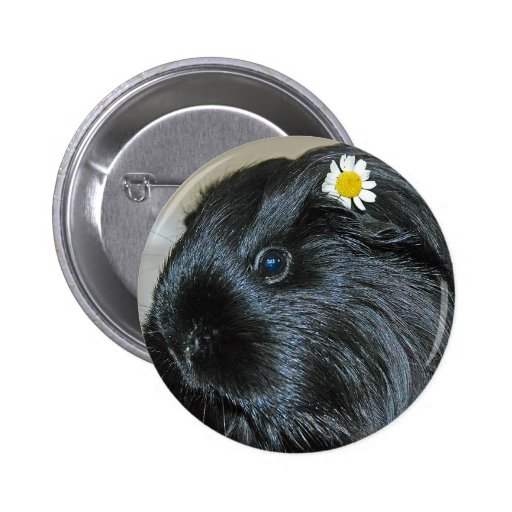 Guinea pig Squee Pin