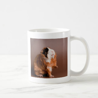 guinea pigs coffee mug