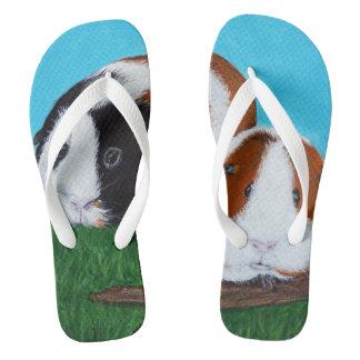 Guinea Pigs Flip Flops