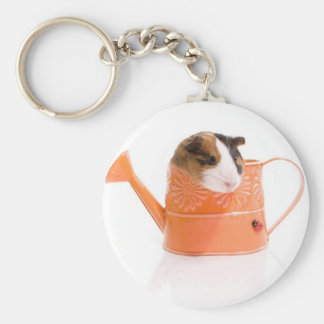 guinea pigs in has watering edge keychain