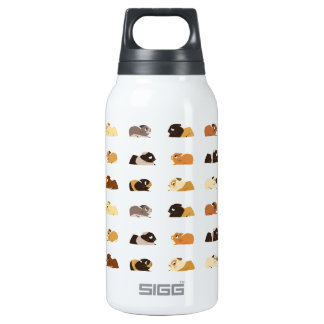 Guinea pigs insulated water bottle