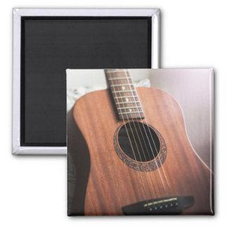 Guitar Magnet