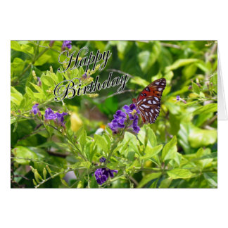 Gulf Fritillary Birthday Card (3741) (a)