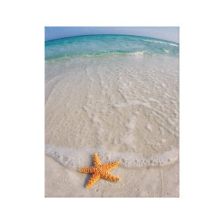 Gulf Island National Seashore Canvas Print