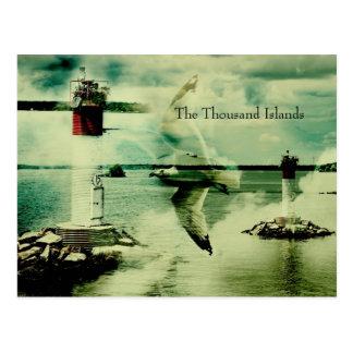 gull flight - the thousand islands postcard