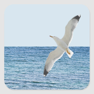 Gull flying above a sea square sticker