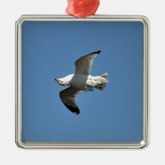 Gull Flying Upside Down Funny Wildlife Photography Metal Ornament