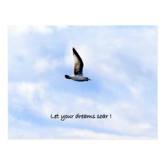 "Gull Postcard ""Let Your Dreams Soar"""