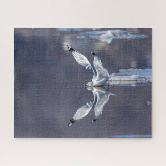 Gull Reflections Jigsaw Puzzle