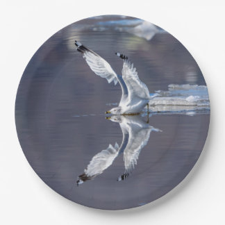 Gull Reflections Paper Plate