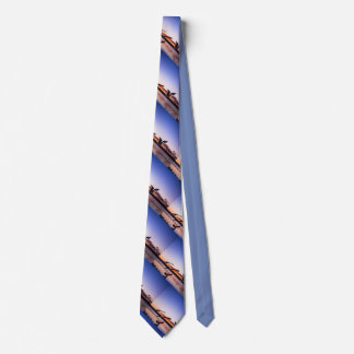 Gulls at sunset tie
