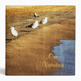gulls in sunset on the beach near water edge vinyl binders