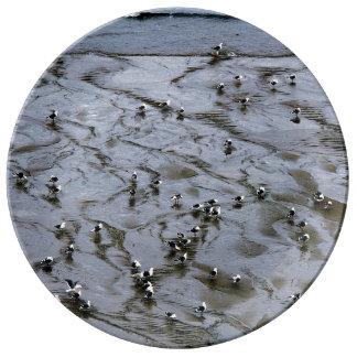 Gulls Porcelain Plates