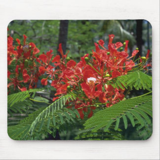 Gulmohar Group Mouse Pad