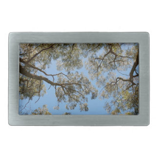 Gum Trees against a Blue sky Belt Buckle