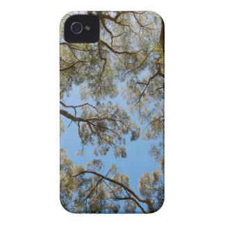 Gum Trees against a Blue sky Case-Mate iPhone 4 Case
