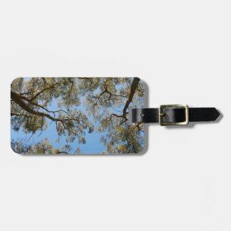 Gum Trees against a Blue sky Luggage Tag