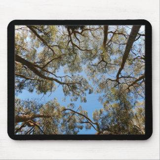 Gum Trees against a Blue sky Mouse Pad