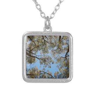 Gum Trees against a Blue sky Silver Plated Necklace