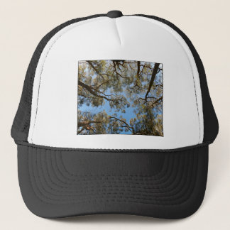 Gum Trees against a Blue sky Trucker Hat
