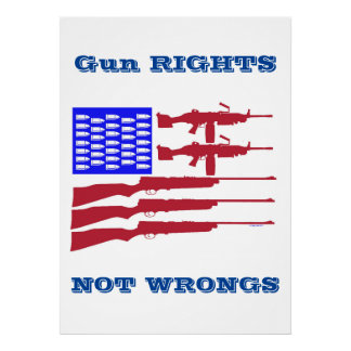 Gun Rights and Wrongs Archival Print