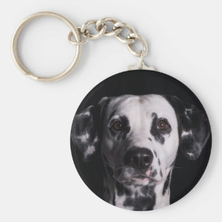 GWDC Dalmatian Photo Contest Basic Round Button Keychain