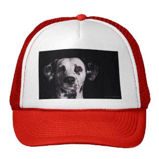 GWDC Dalmatian Photo Contest Trucker Hat
