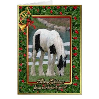 Gypsy Cob Horse Blank Christmas Card