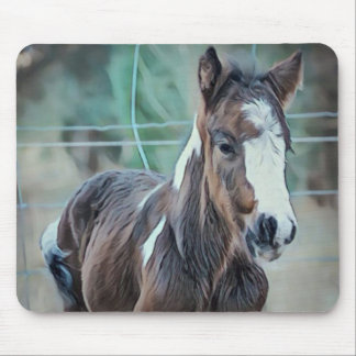 Gypsy Foal Mouse Pad
