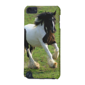 Gypsy Vanner iPod Touch (5th Generation) Covers