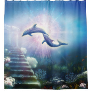 H019 Nori Dolphins