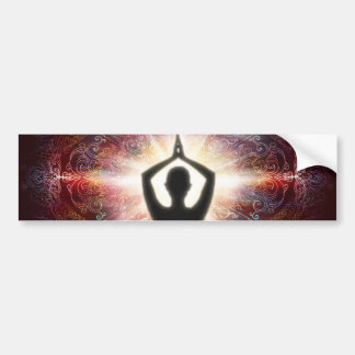 H067 Mandala Salutation 2013 Bumper Sticker