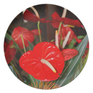 H.awaiian Anthurium Flowers Bouquet Dinner Plates