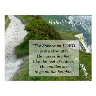 Habakkuk 3 19 Scripture Memory Card Postcard