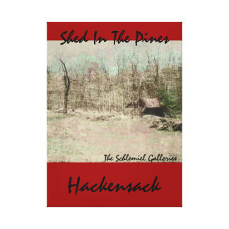 Hackensack - Shed In The Pines Canvas Print