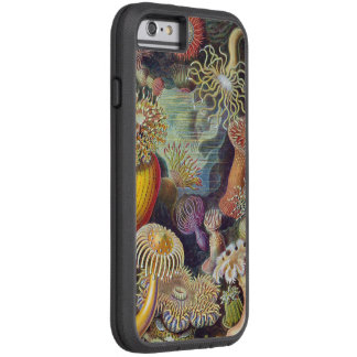 Haeckel Actiniae Vintage Print Tough Xtreme iPhone 6 Case