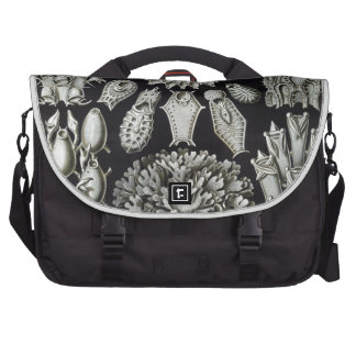Haeckel Bryozoa Bags For Laptop