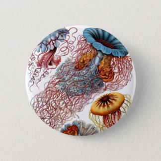 Haeckel Discomedusae 2 Inch Round Button
