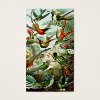 Haeckel Hummingbirds Business Card