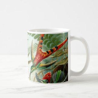 Haeckel Hummingbirds Coffee Mug